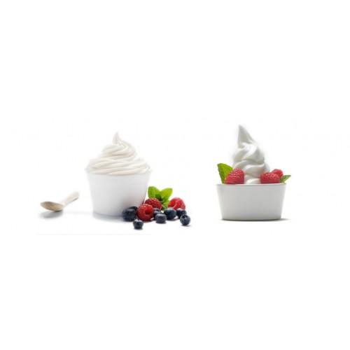 Base Frozen Yaourt à préparer 1,2kg (colis x 12 unités)