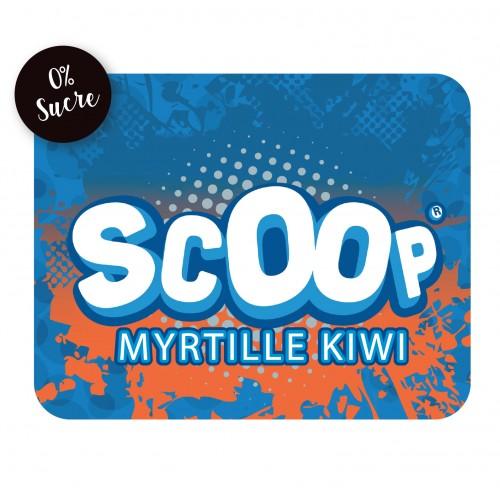 Sirop Sans Sucre Myrtille Kiwi